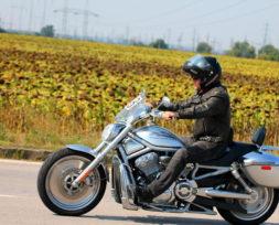 harley-davidson-ride